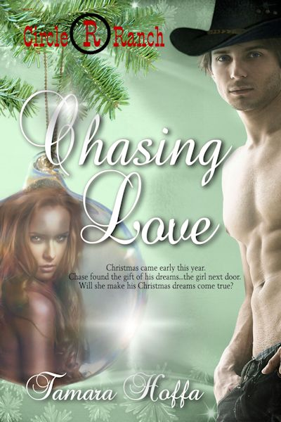 Chasing Love by Tamara Hoffa