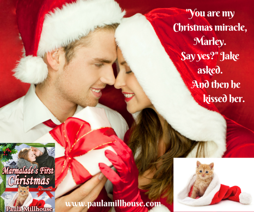 Paula Millhouse, Christmas, Holiday gift giving, 2016, kitten, hot chocolate, recipes, romance, ebook, kindle, Mamalade's First Christmas