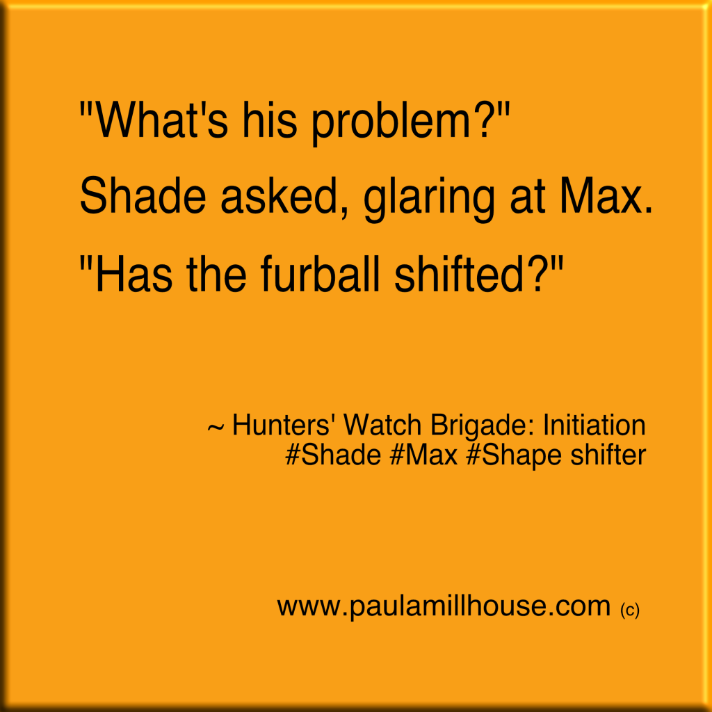 Paula Millhouse, Hunters' Watch Brigade:Initiation, Shade, Max, fur ball, shapeshifter, www.paulamillhouse.com