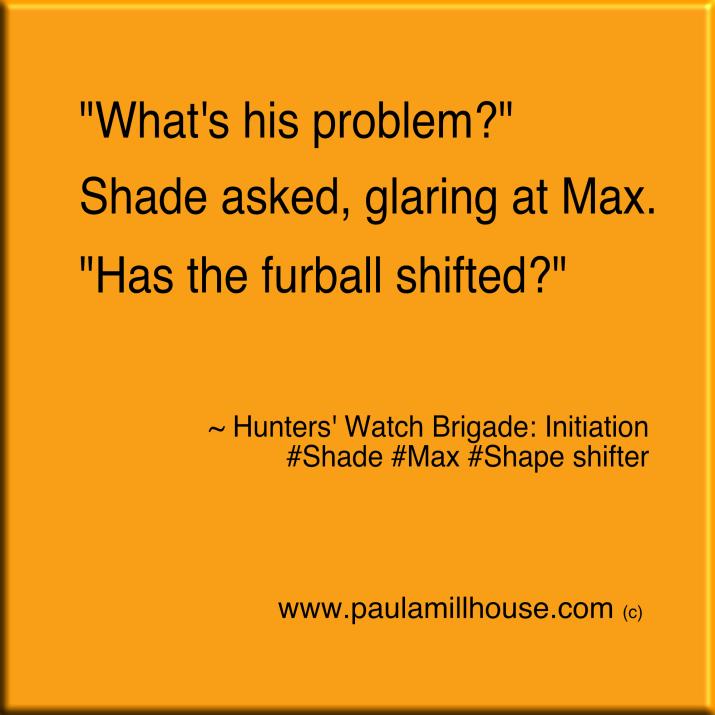 Paula Millhouse, Hunters' Watch Brigade:Initiation, Shade, Max, fur ball, shapeshifter, www.paulamillhouse.com